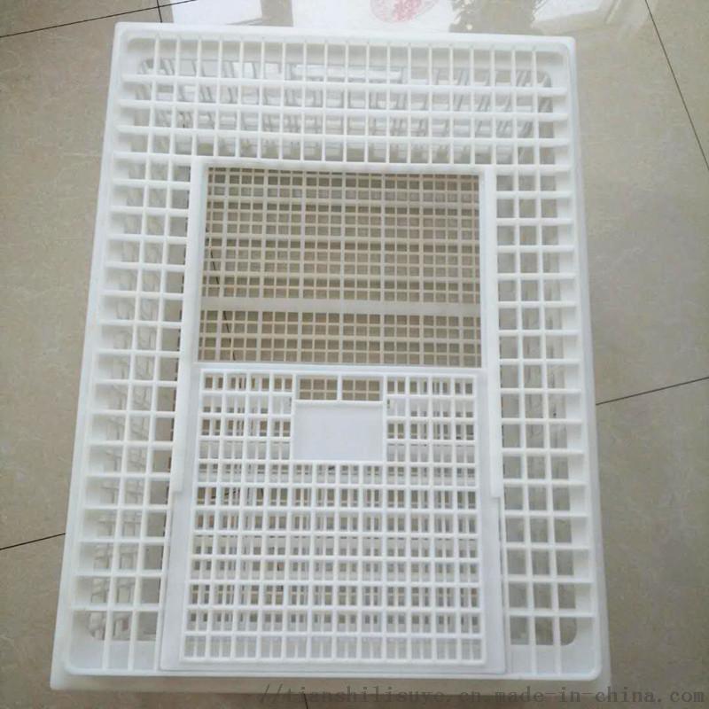元宝型成鸡运输笼塑料鸡鸭周转笼鸡鸭鹅运输笼厂家138010152