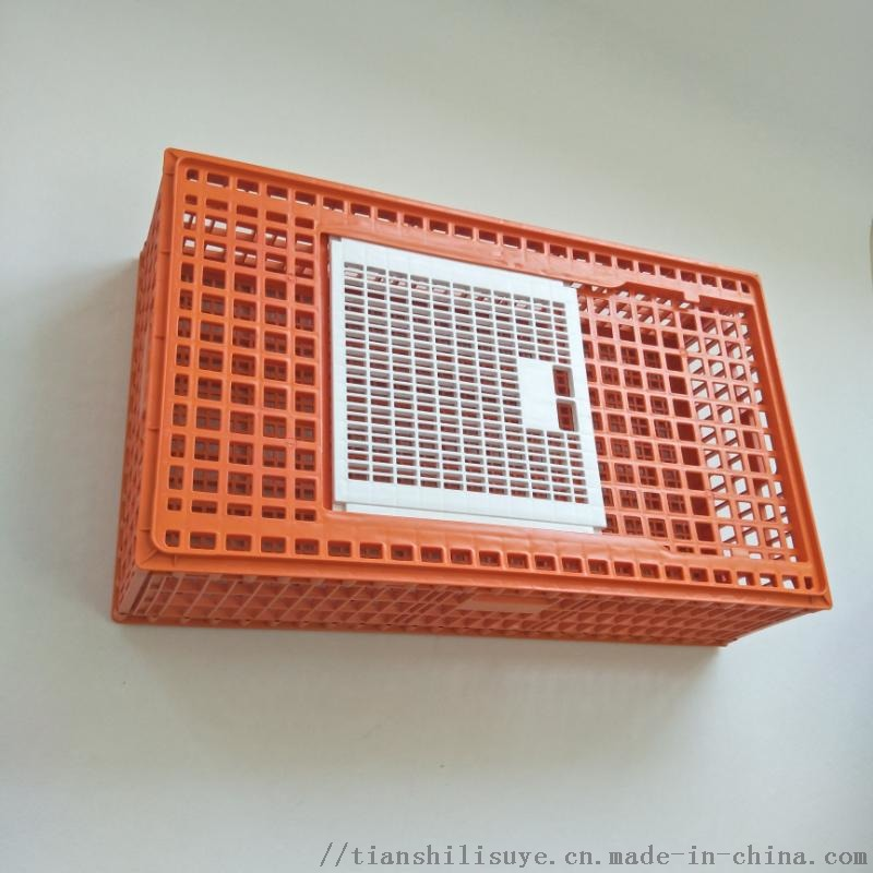 天仕利塑料成鸡运输笼塑料鸡笼子鸡鸭周转箱厂家129139742