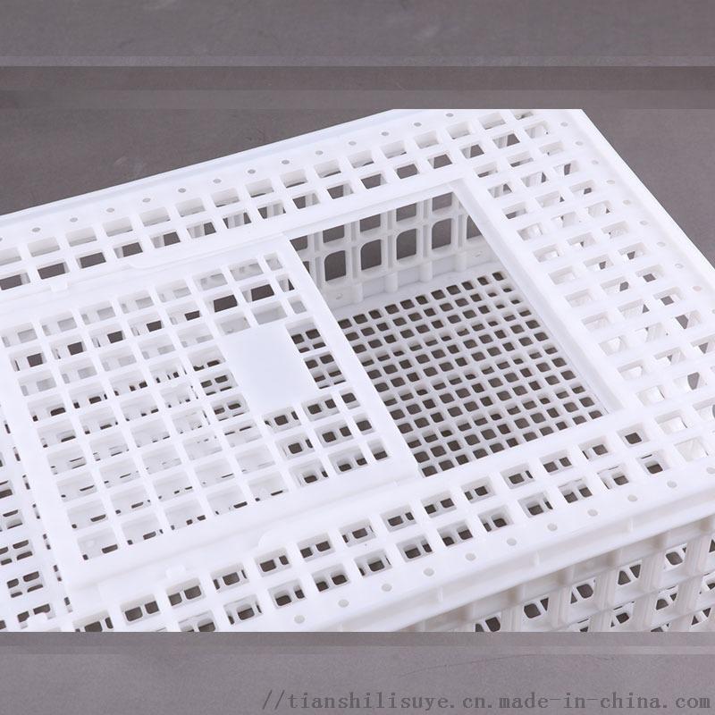 天仕利塑料成鸡运输笼塑料鸡笼子鸡鸭周转箱厂家129139662