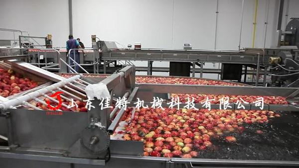 可清洗打蜡的苹果加工设备,济南苹果清洗机127705592