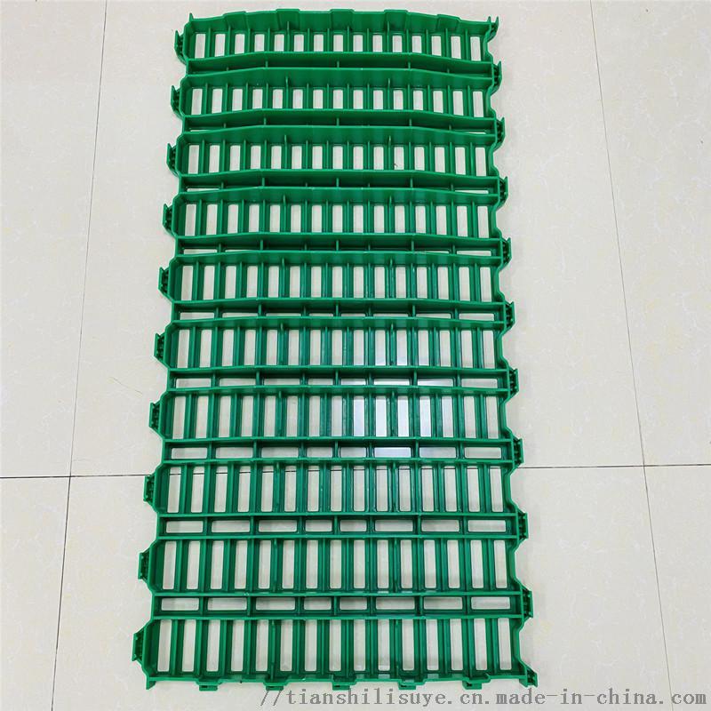 山东塑料羊床 羊用漏粪床生产厂家872192982