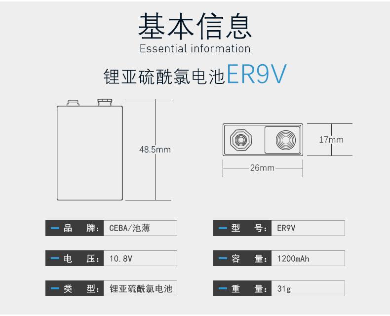 ER9V(2)_03.jpg