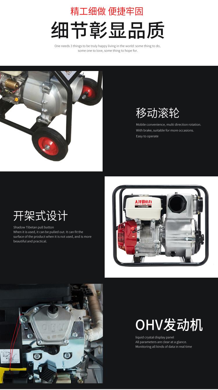 大泽动力2寸汽油水泵140034442