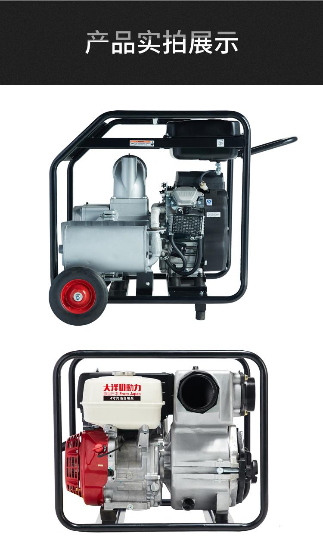 大泽动力2寸汽油水泵140034412