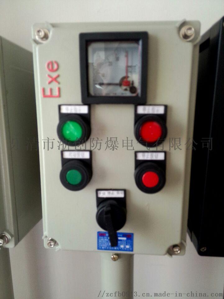 LCZ8030-A2D2K1B立式防爆防腐操作柱97064885
