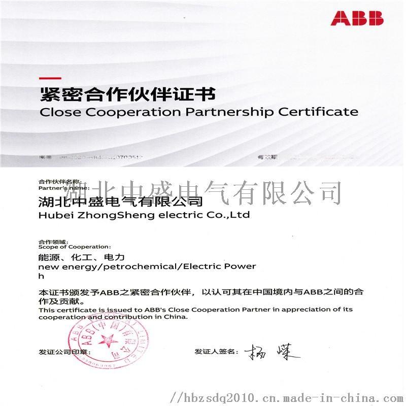 ABB 紧密合作伙伴证书.jpg