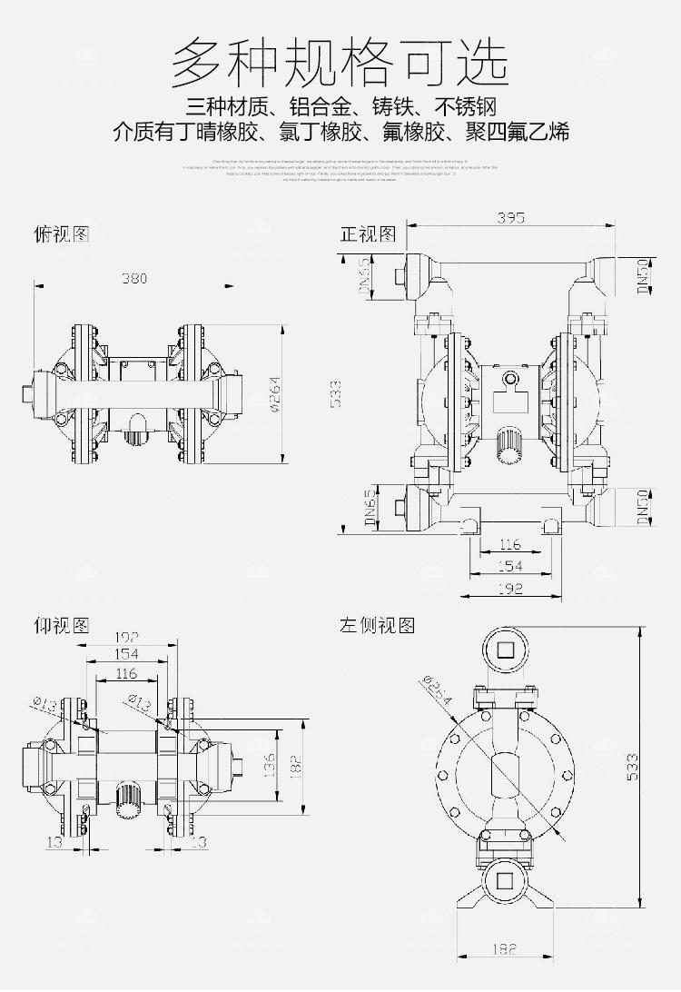 南洋输送泵-隔膜泵_04.jpg