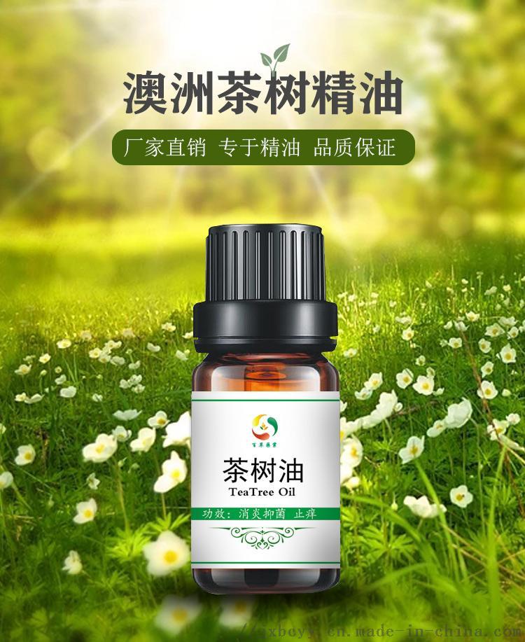 茶树油中文_