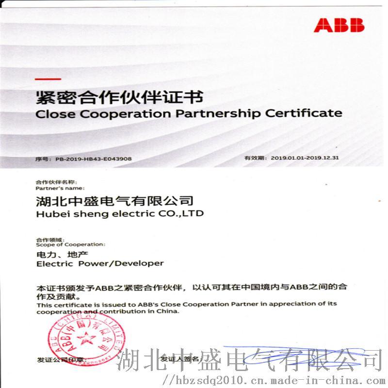 ABB紧密合作伙伴.jpg