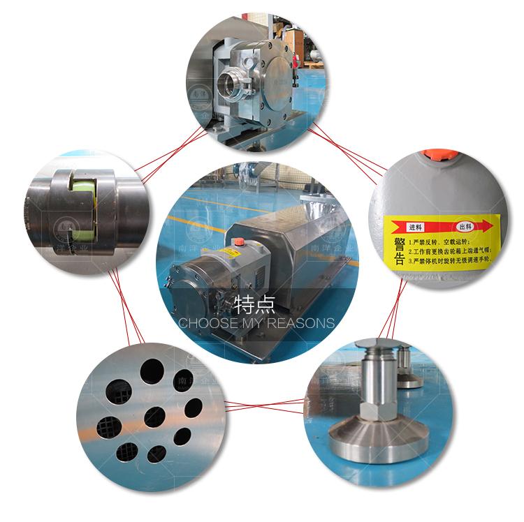 南洋输送泵-转子泵新款_03.jpg