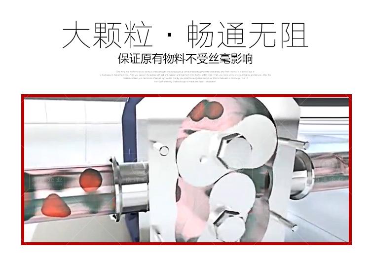 南洋输送泵-转子泵新款_07.jpg
