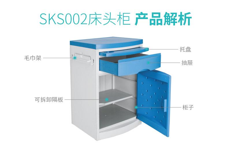 SKS002-01_