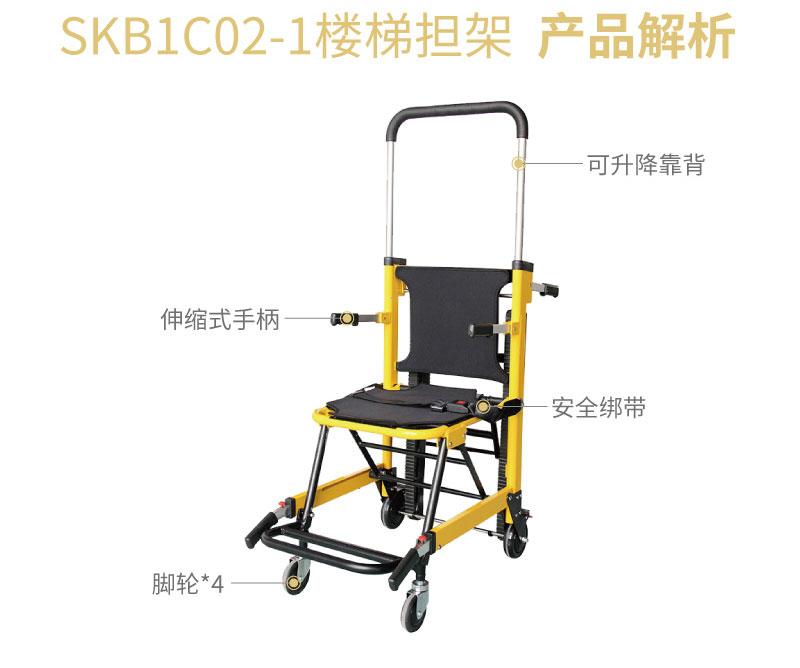 SKB1C02-1_
