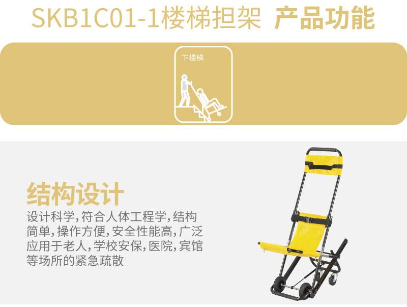 SKB1C01-1_