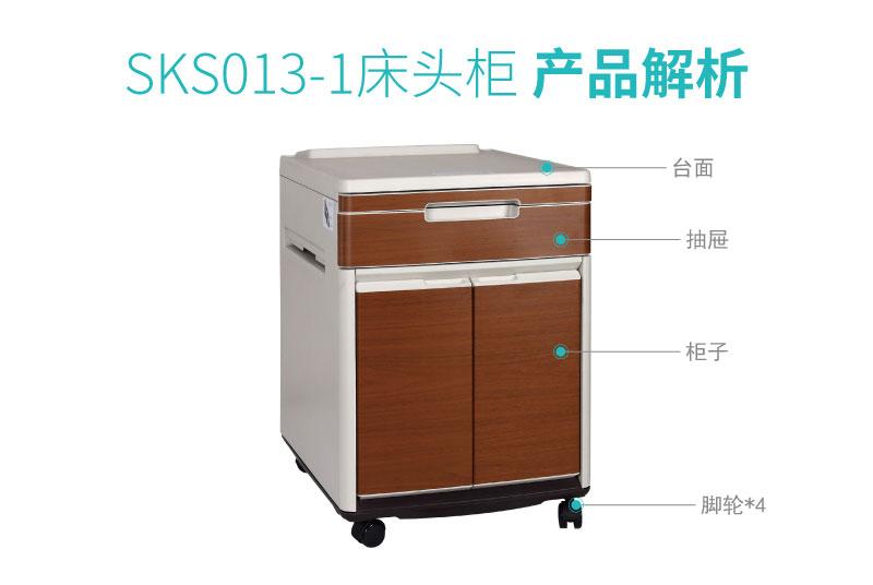 SKS013-1-01_