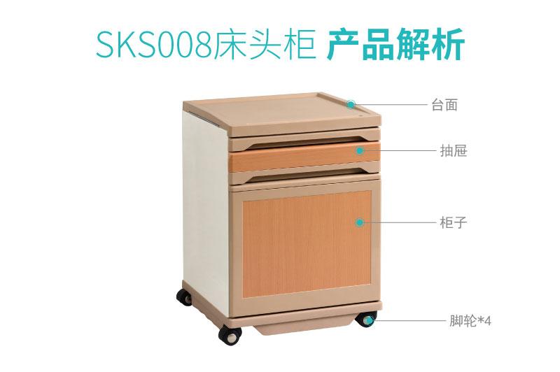 SKS008-01_