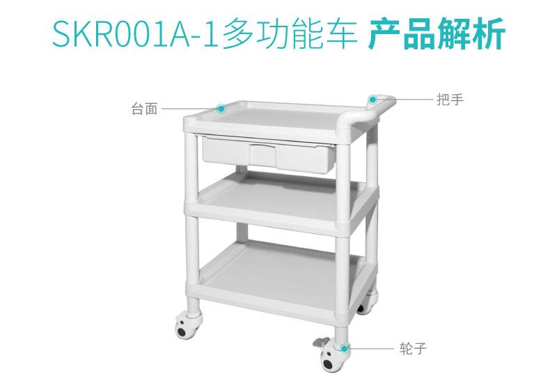 SKR001A-1-01_