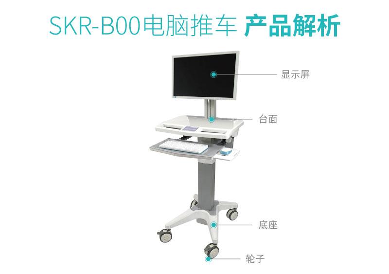 SKR-B00-01_
