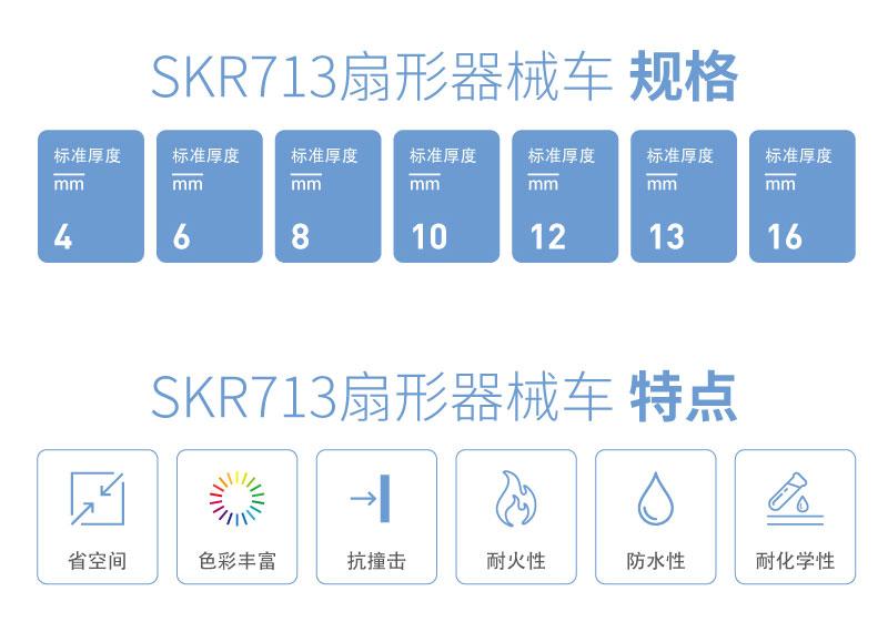 SKR713-01_