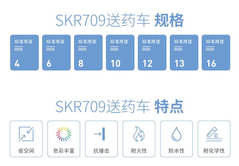SKR709-01_