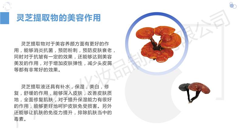 新品YSMZ0008XGN净透深层洁肤霜_10.jpg