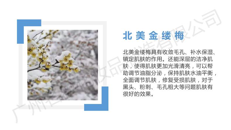 新品YSMZ0008XGN净透深层洁肤霜_13.jpg