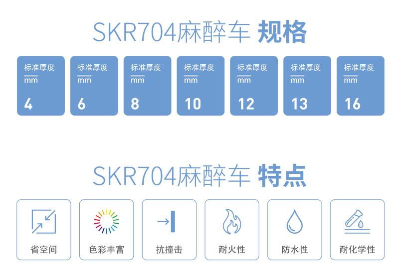 SKR704-01_