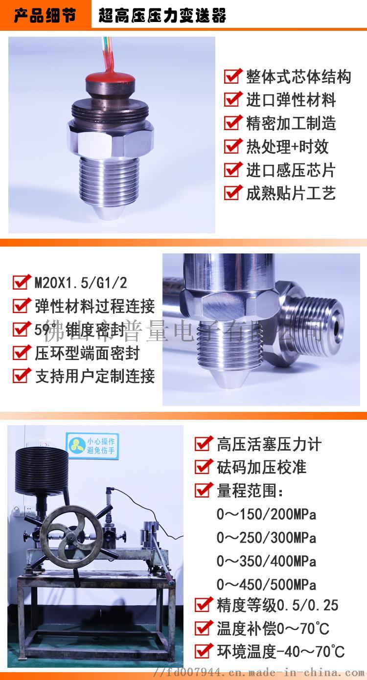 PT500-702-07产品细节