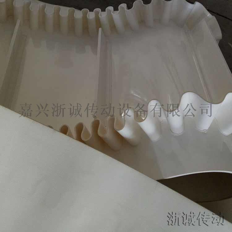 PVC输送带白色裙边挡板带.jpg