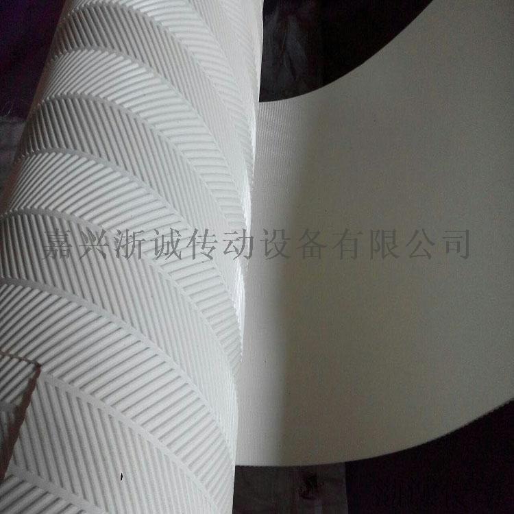 鱼骨纹带 (3).jpg