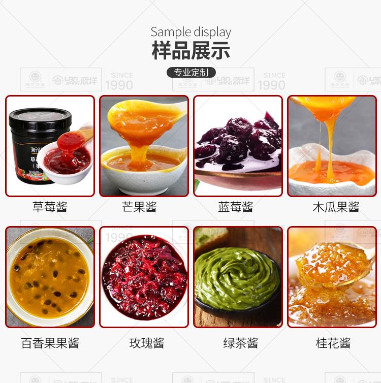 南洋果酱生产线_05.jpg