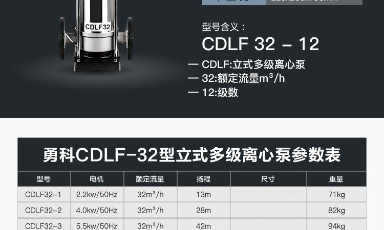 CDLF-32_02