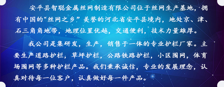 详情页公司简介
