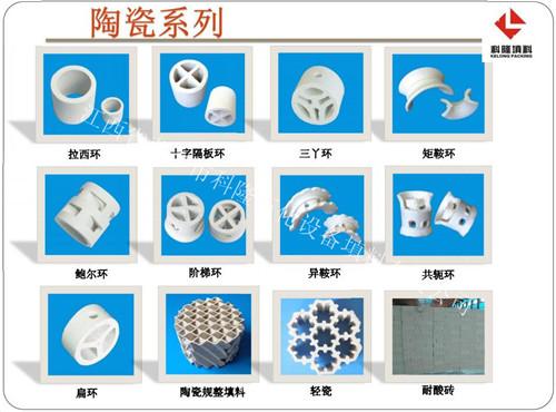 轻瓷规整填料 轻瓷梅花环 XA-1轻瓷多齿环填料49745185
