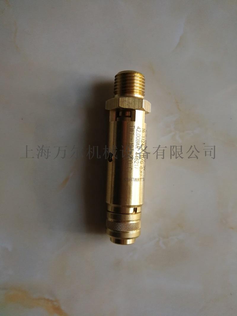 0830101064安全閥高壓機.jpg