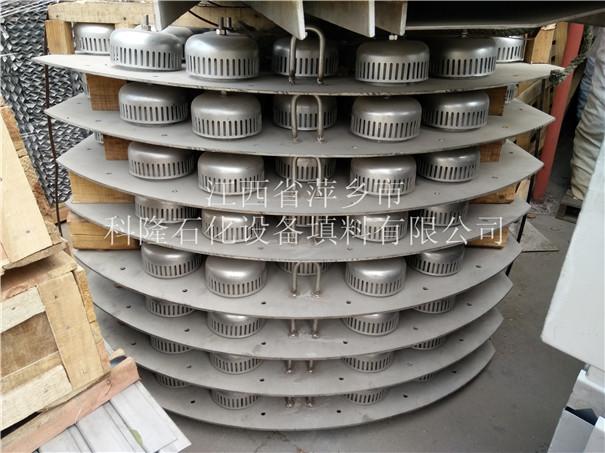 泡罩塔盘厂家 浮阀塔盘 固阀塔盘 条形浮阀塔盘均可生产51439935