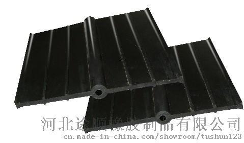 中埋式橡胶止水带 (2)