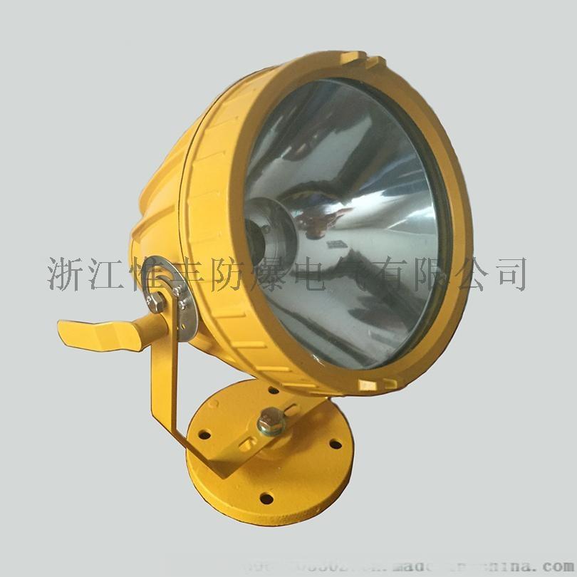 BTD53防爆投光燈-03