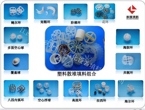 塑料散堆填料组合图