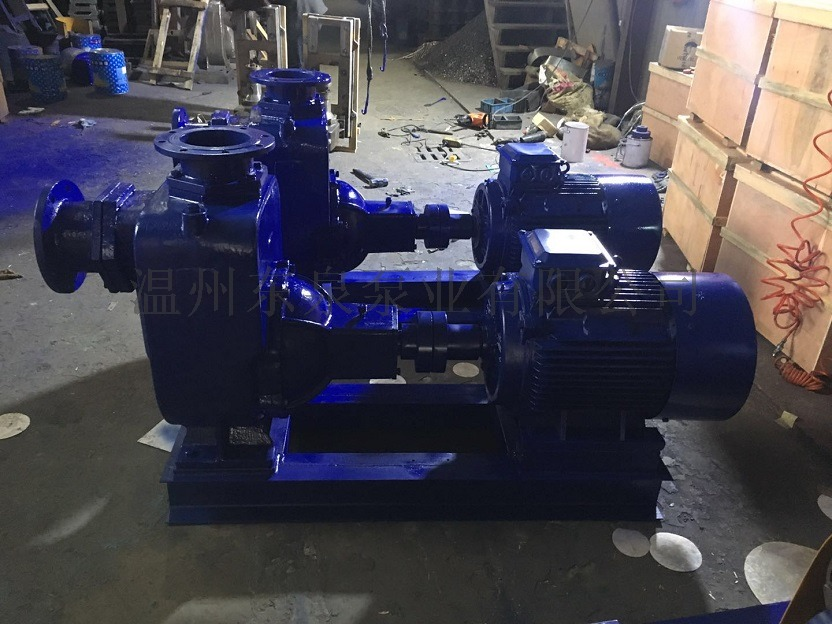ZW自吸排污泵,自吸泵,自吸无堵塞排污泵777196905