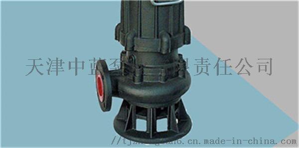 潜水污水泵5.jpg