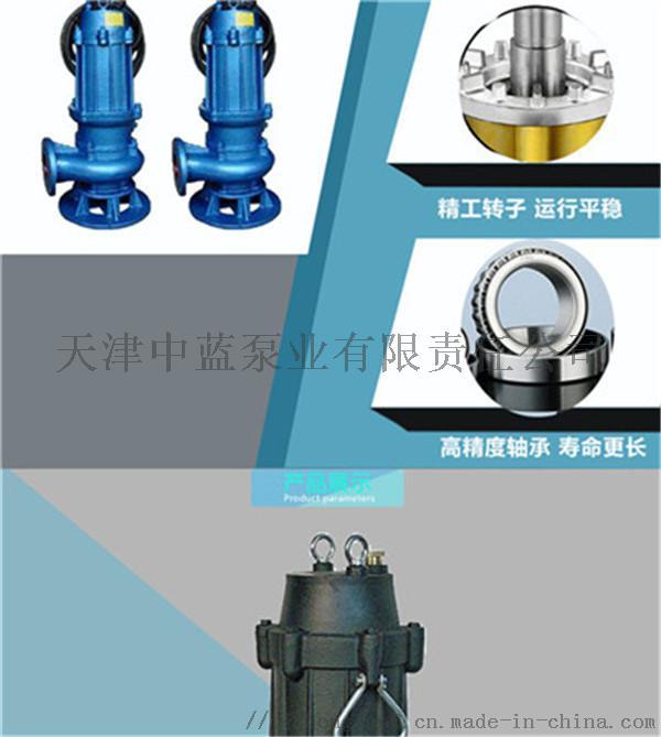 南方抗洪JYWQ潜水污水泵结构782593512