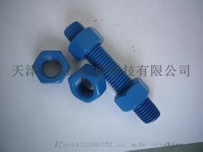 A193 B7   PTFE處理 特氟龍螺栓753939442