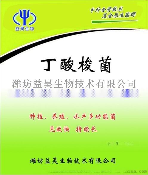 水产用丁酸梭菌 丁酸梭菌厂家76363222