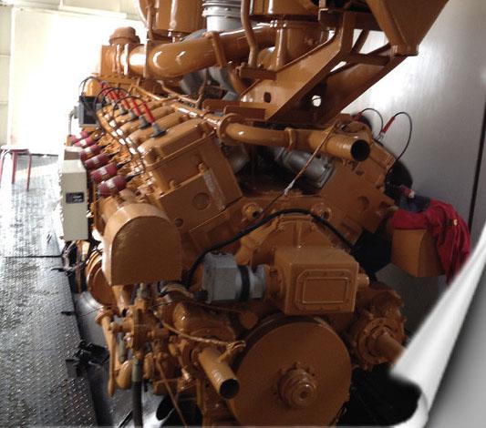 山東綠環動力沼氣發電機組