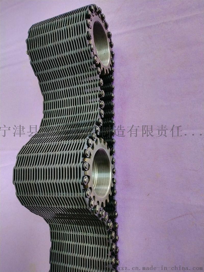 Silent Tooth chain13.jpg