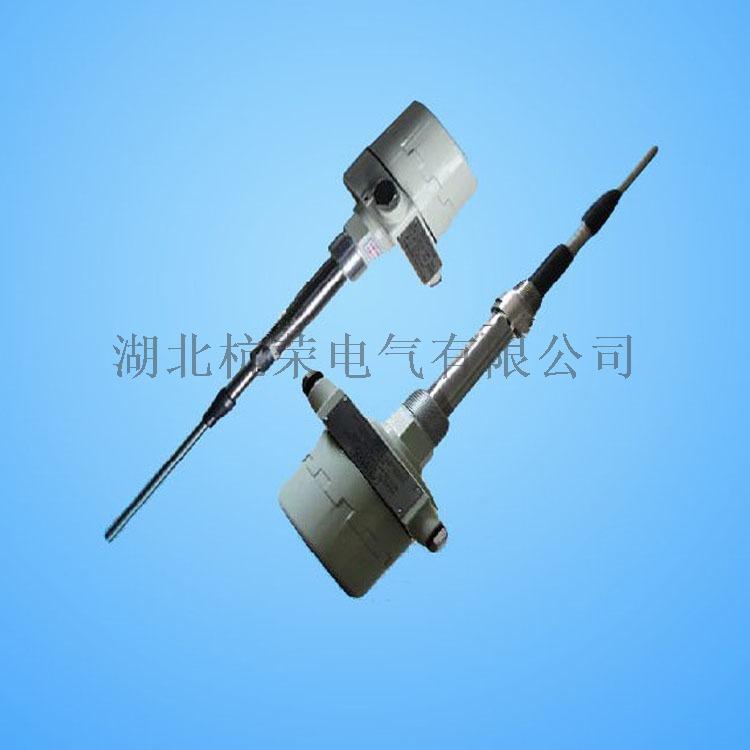 C181-1保護管型阻旋料位開關79190435
