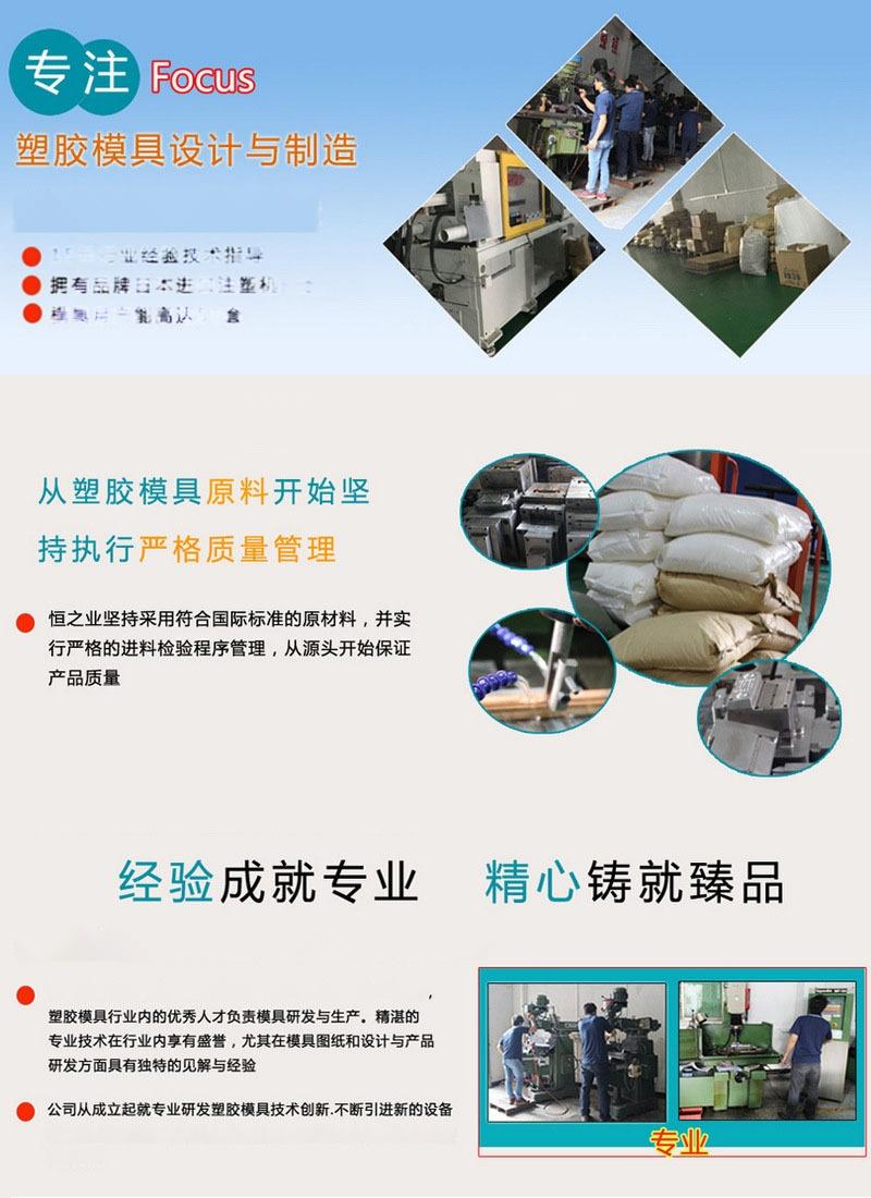 恒之业塑胶模具制品 (2).jpg