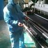 碳纤维布厂家 碳纤布93522202