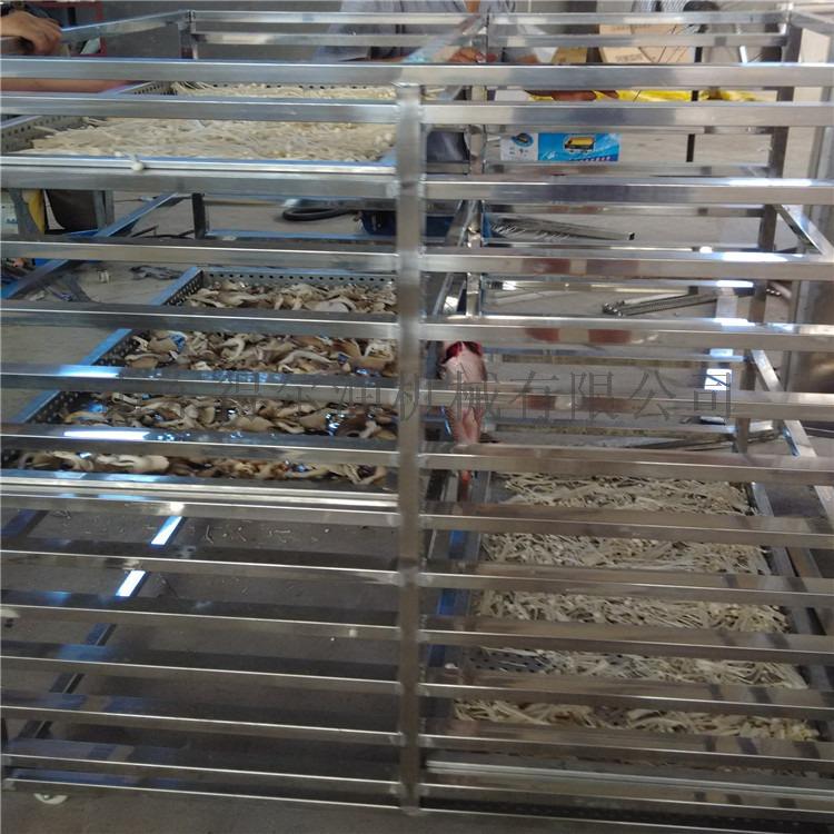 食品烘干设备 金银花等药材干燥设备 食品药材烘干箱93564612
